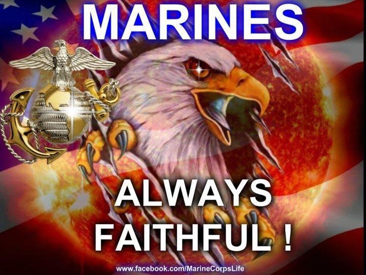 an eagle - Marines always faithful