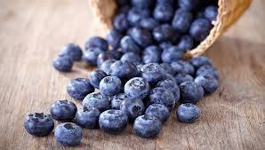 Read Full Article on Blueberries!