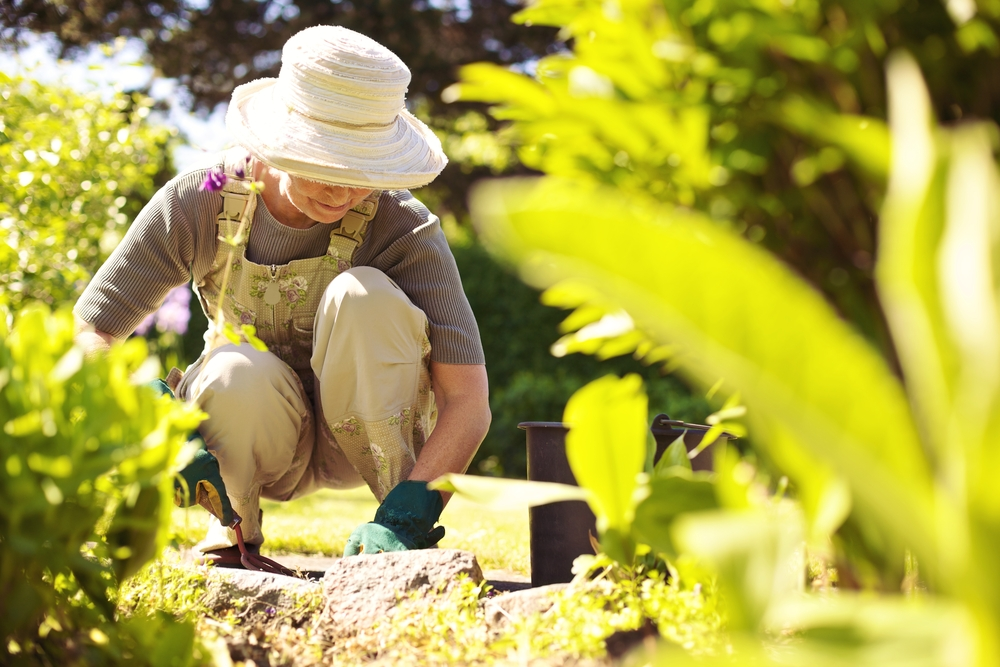 gardening spring fitness exercises prevent back pain stretches